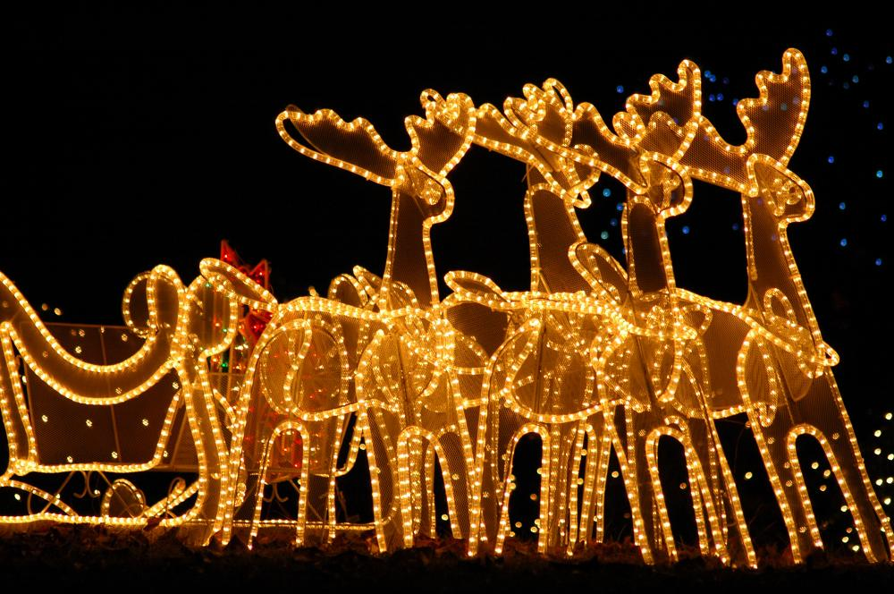 reindeer-led-christmas-lights